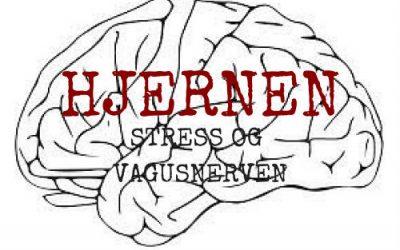 Stress og din gode ven vagusnerven
