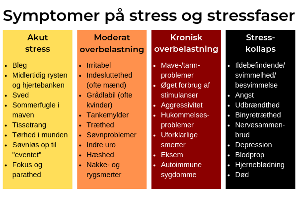 Typiske stresssymptomer og stressfaser Rudi Sorgenfri Kropsterapi