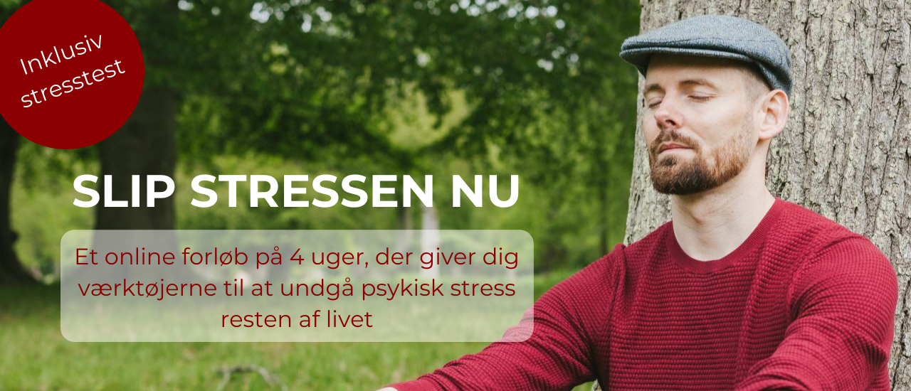 Slip stressen nu 4 ugers onlineforløb hos Rudi Sorgenfri Kropsterapi